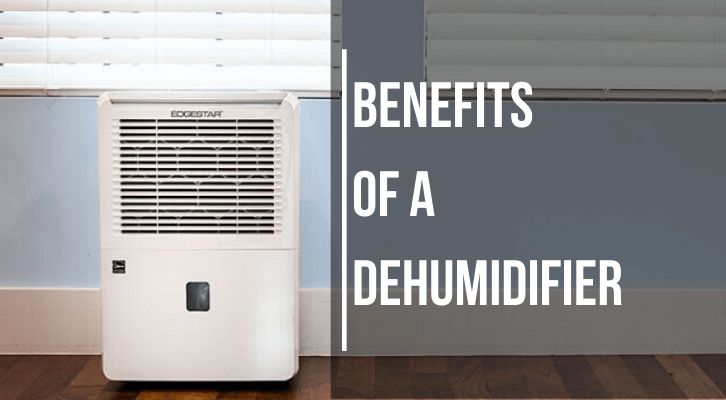 Dehumidifier – An Indispensable Appliance for Every Family This Summer